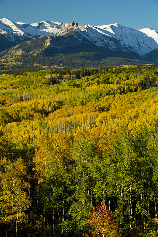 crested butte fall color